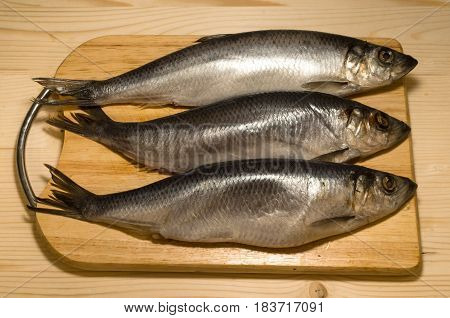 Fresh fish herring on a chopping board on wooden table.