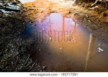 Rain Droplets And Ripples In A Puddle In The Spring