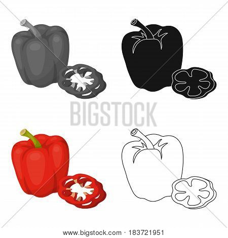 Bell pepper.BBQ single icon in cartoon style vector symbol stock illustration .