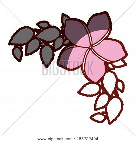 red contour of malva flower with leaves vector illustration