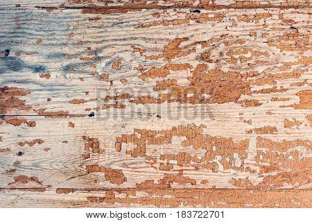 Cracks. Background Surface With Creative Cracks. Web Cracks As Background For Creative Layout Design