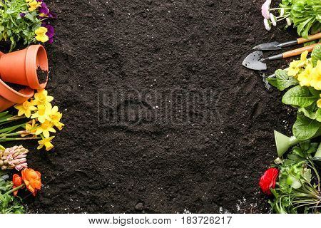 Composition with flowers and gardening tools on soil background