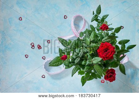 Background Wedding, Mother's Day Or Birthday. Beautiful Fresh Red Rose Flowers On A Blue Concrete Ba