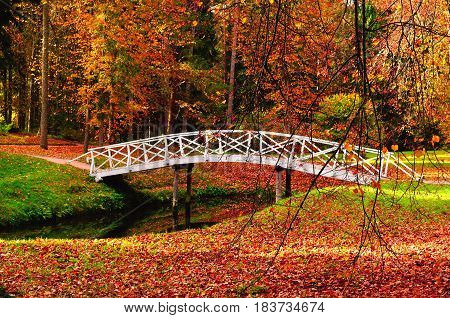 Autumn landscape - white wooden bridge in the autumn park among the yellowed autumn trees and fallen autumn leaves. Autumn park landscape colorful autumn view. Autumn park in October - autumn view