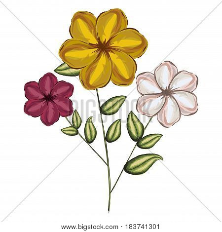 watercolor silhouette of malva plant with flowers red yellow and white vector illustration