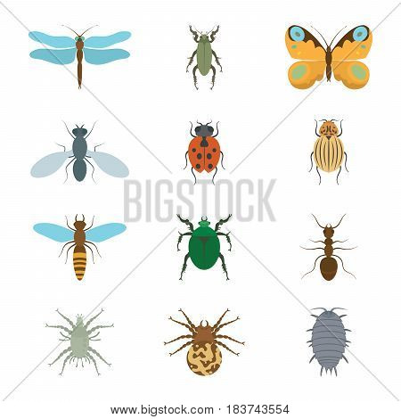 Icons set insects flat - dragonfly, beetle, butterfly, fly, ladybug, koroladsky beetle, wasp, bronzovik ant, tick a spider wood louse vector illustration