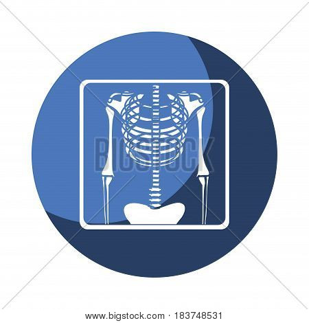 color circular frame shading with chest radiography vector illustration