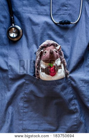 stethoscope, hedgehog toy in children's doctor pocket blue fabric background top view mock-up