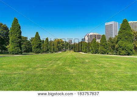 Urban landscape of green grass lawn on sunny day. Public garden park