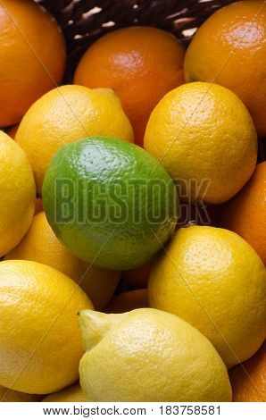 Citrus Fruit Basket Close Up Topped With Lime