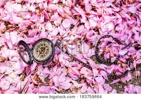 Springtime Pocket Watch Love in Pink Flower Petals
