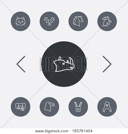 Set Of 9 Alive Outline Icons Set.Collection Of Horse, Penguin, Rabbit And Other Elements.