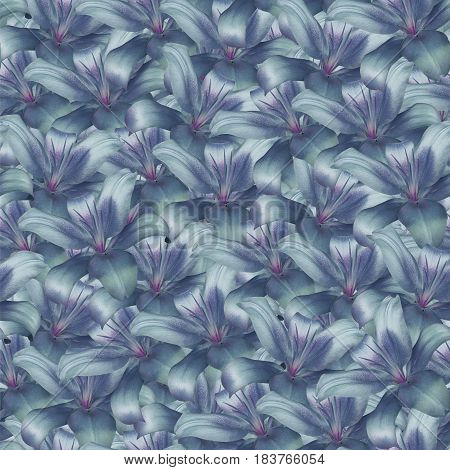 Seamless infinite background floral. Purple-blue-turquoise flowers lily. For design and printing. Background of natural flowers. Wall-papers.