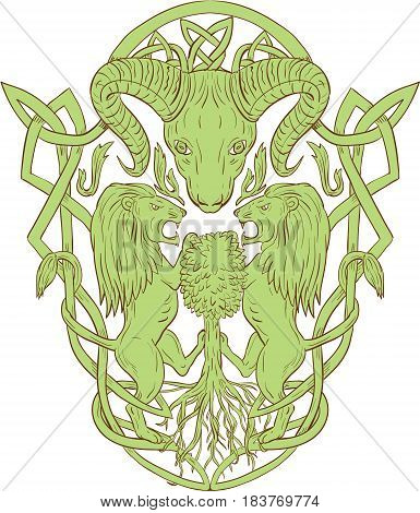 Illustration of stylized bighorn sheep head with two lion supporters climbing on tree with Celtic knot called Icovellavna plait work or knotwork woven into unbroken cord design set on isolated white background.