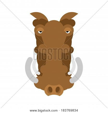 Warthog Wild Boar Isolated. African Pig. Wild Animal On White Background