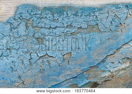 Close Up Of Dried Chipped Blue Paint On Wood