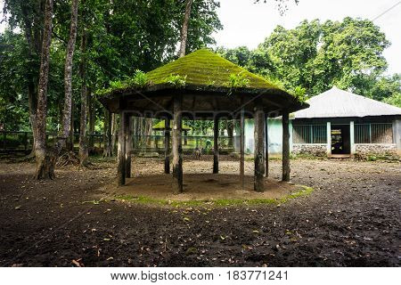 a gazebo with moss and ferns on the roof and pillars made from wood photo taken in ragunan zoo jakarta indonesia java