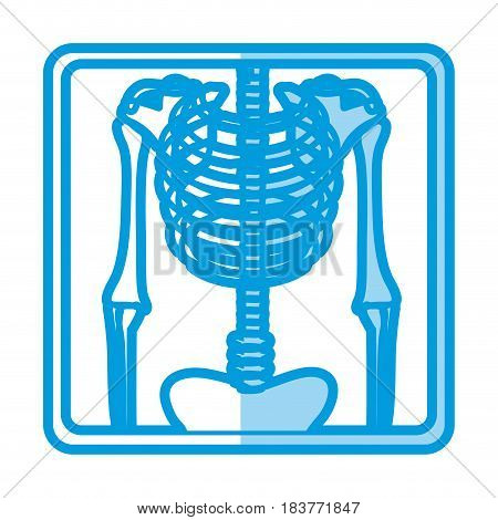 blue shading silhouette with x-ray of bones vector illustration
