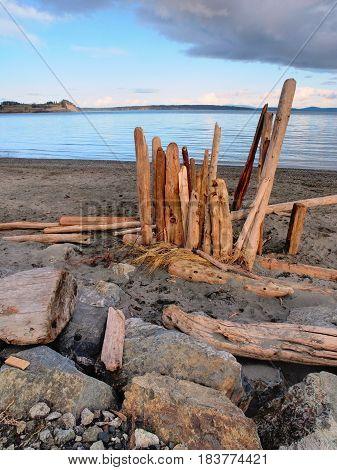 Driftwood on the sandy ocean beach, sunset