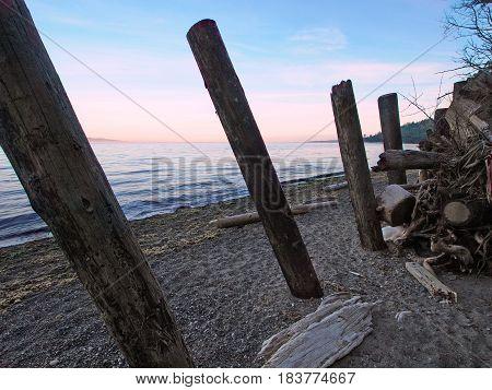 Ocean sandy beach at the sunset, driftwood