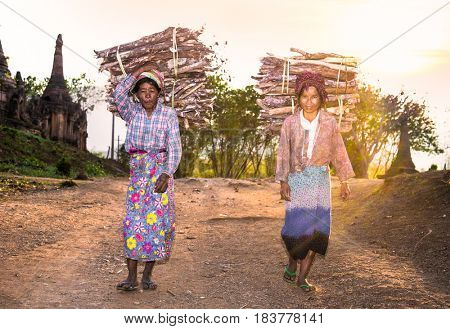 INLE, MYANMAR - MARC 4, 2017: Burmese women carrying a bundle of heavy wood wearing traditional clothing on March  4, 2017, in Indein village , Myanmar. ( Burma)