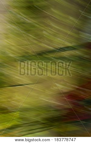Photographic Abstraction in Greens and Reds and adding movement