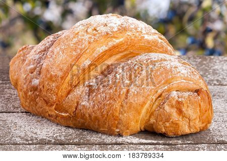 croissant sprinkled with powdered sugar on a wooden board with a blurry garden background.