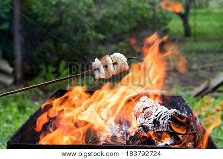 lard on fire close up shish kebab.