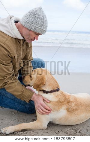 Man pampering dog while sitting at the beach