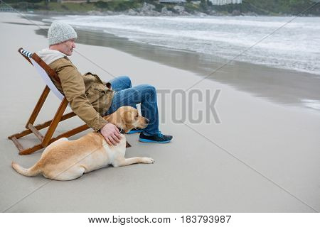 Man pampering dog while sitting on chair at the beach