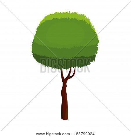 tree foliage stem trunk over white background vector illustration