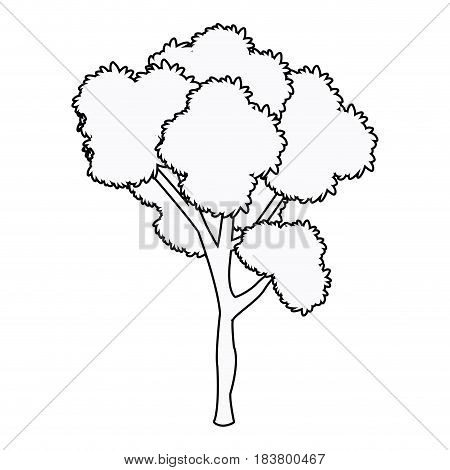 tree plant leafy forest wood outline vector illustration