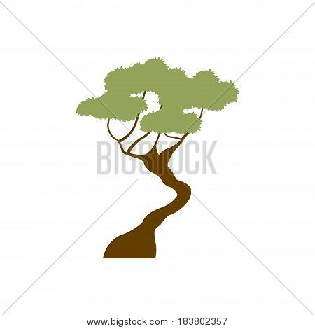 green tree bonsai decoration garden image vector illustration