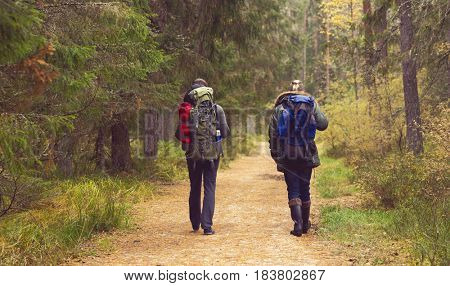 Two handsome, bearded men with backpacks hiking in autumn forest. Camp, adventure, traveling and trip concept.