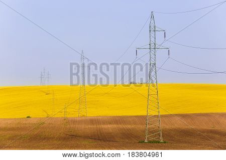 Electricity powerlines over vibrantly colorful rapeseed fields. Power supply agriculture mass production modern industrial landscape concept and background with copy space.