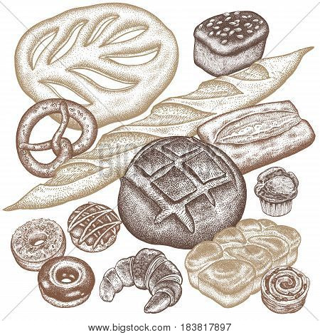 Bread products set - rye bread, ciabatta, white bread, whole-grain bread, croissant, French baguette, pretzel, donut, muffin isolated on white background. Vector food illustration art.