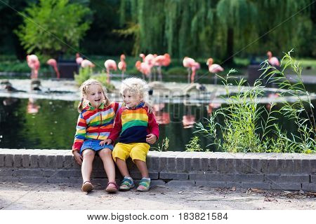 Children Watching Animals At The Zoo