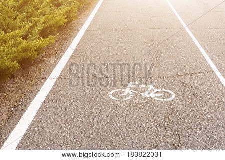 Bicycle sign on the road. Bike lane in the park.