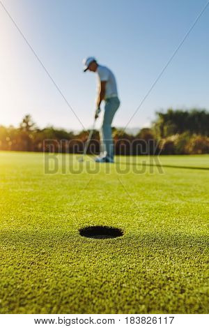 Professional Golfer Putting Ball In Hole