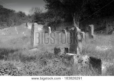 Gravestones in old cemetery black and white