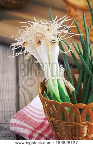 Fresh Scallion With Root Ends