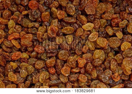 Brown background from the heap of small dry raisins