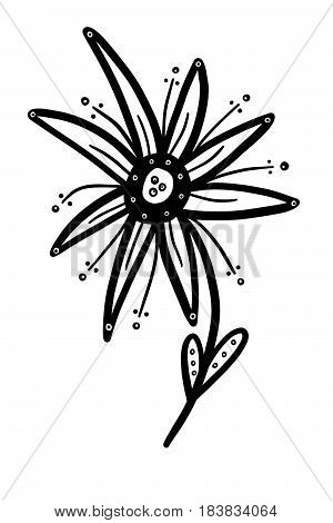 This is a fun whimsical black and white flower that can be used as is or colored to suit your needs.