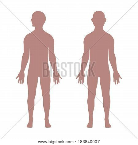 Male human anatomical shapes. Man silhouette. Vector illustration