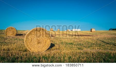 Round bales of straw in a field in Prince Edward Island