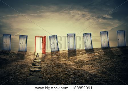 Mystic meadow with a lot of closed doors and one opened with a pathway going to it. Different life opportunities and success symbol best choice for career development concept.