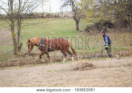 A Man Plows The Ground With A Plow Under His Horse