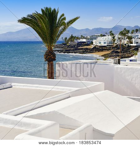 a view of some whitewashed houses and the coastline of Playa del Carmen, in Lanzarote, Canary Islands, Spain