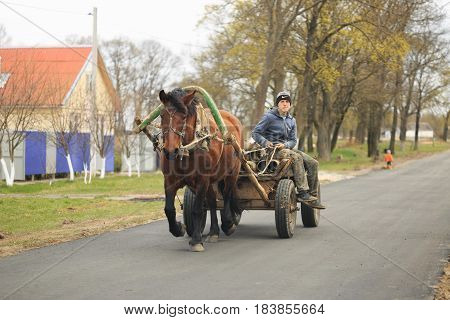 GOMEL, BELARUS - 19 APRIL 2017: A cart with a horse rides around the Villehage