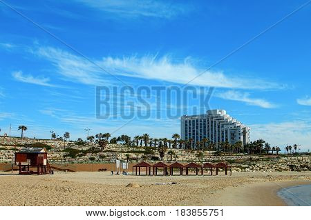 Ashkelon summery coastline with palm trees. Izrael